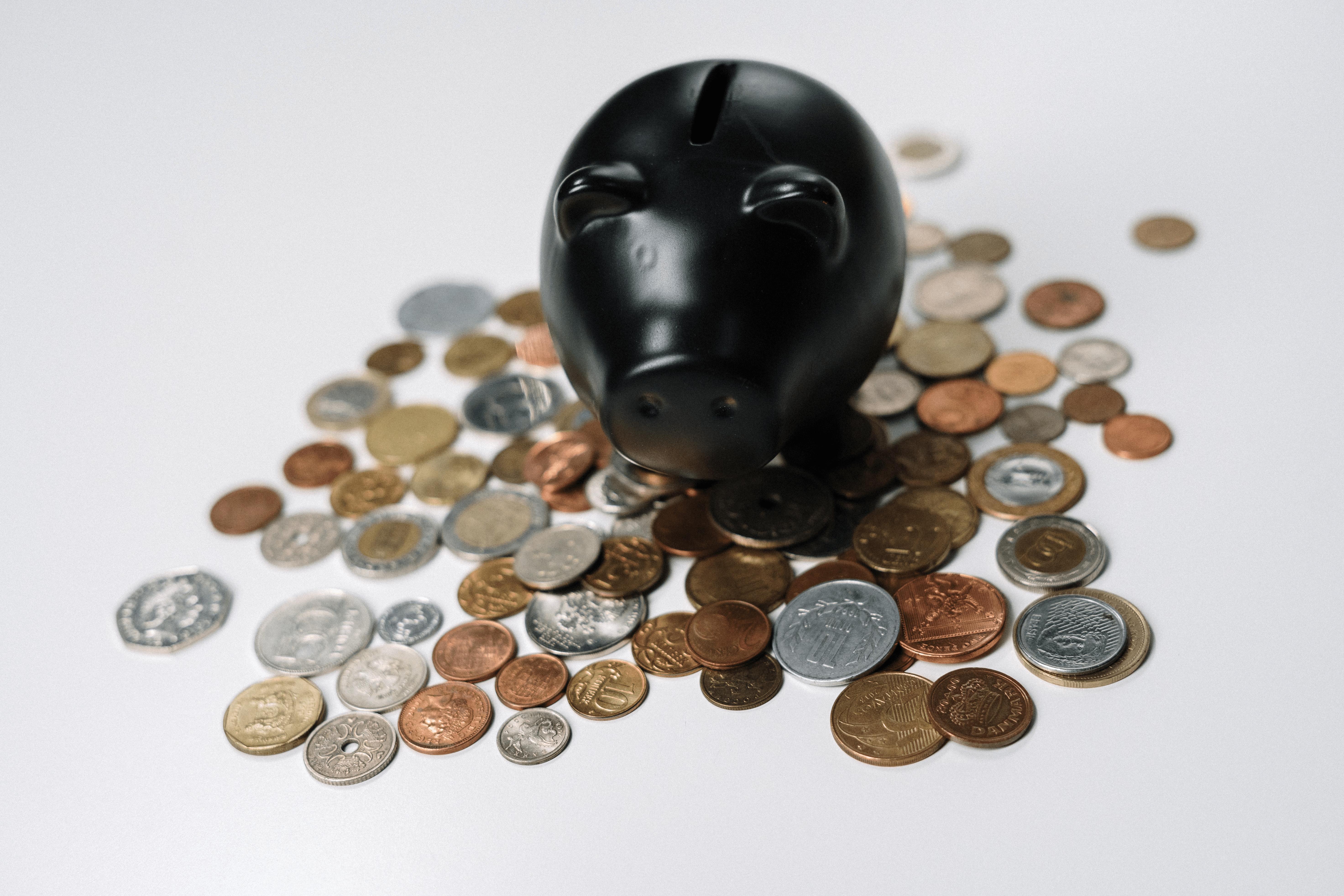 pig-coins